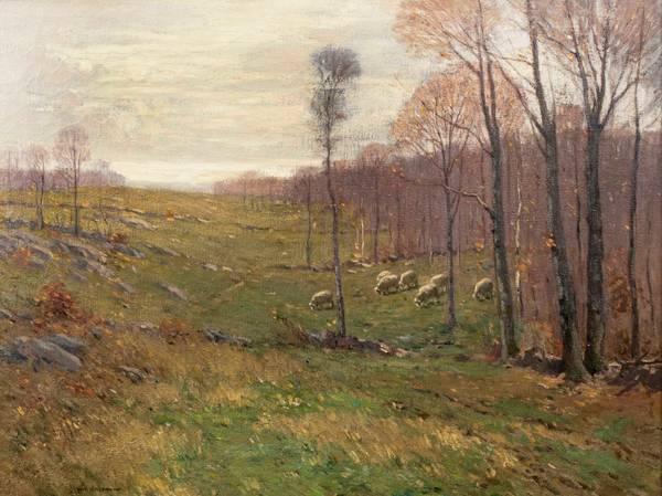 William S. Robinson Sheep in Meadow Unframed