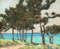 Clark Greenwood Voorhees Cedar Trees at Whale Bay