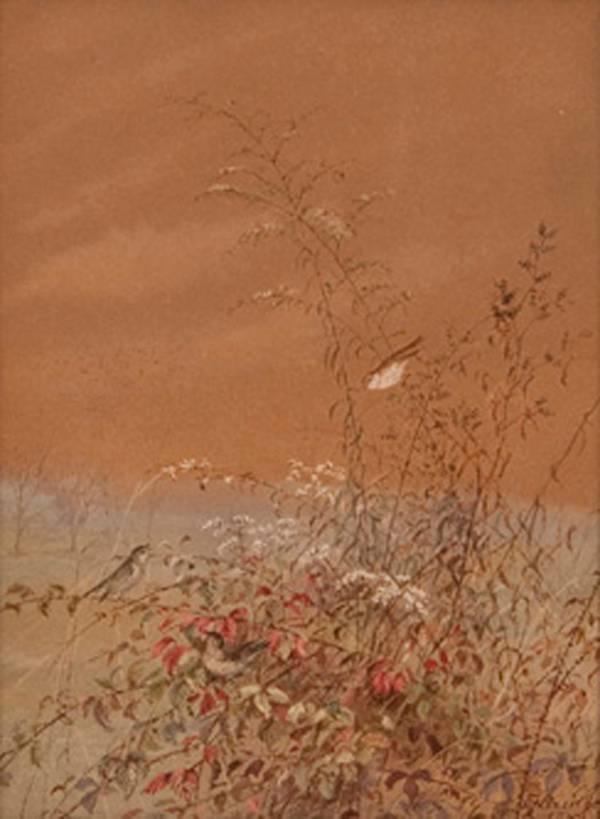 Fidelia Bridges Birds in the Brambles 1877