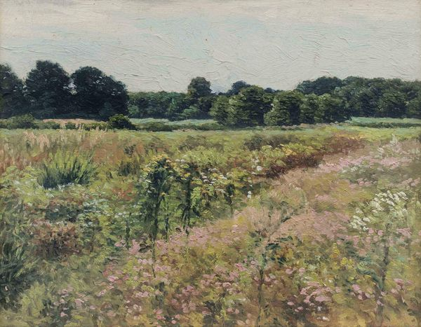 James Perry Wilson Field of Wildflowers Painted at Towaco New Jersey Unframed_dontuse