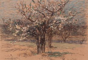 Walter Griffin Orchard in Blossom Unframed