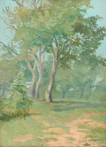 Mary L. Haines Tree Landscape