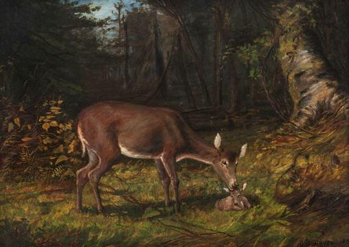 George Glenn Newell Deer in a Woodland Landscape Unframed