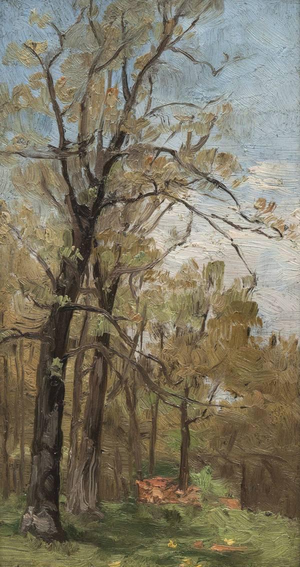 Adele Frances Bedell Landscape With Tree (recto) Unframed