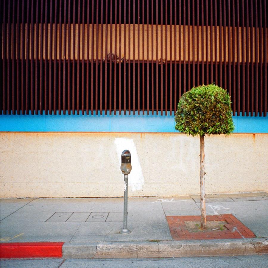 AYUSON_sidewalk_800kb.jpg