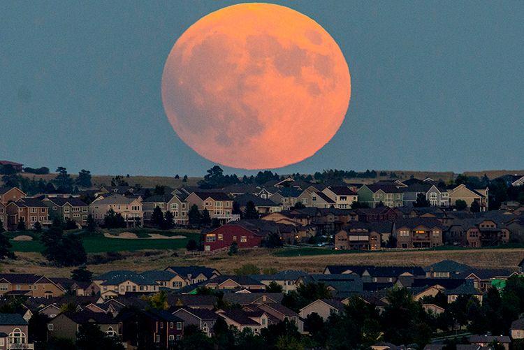 8365 raw big moon LR.jpg