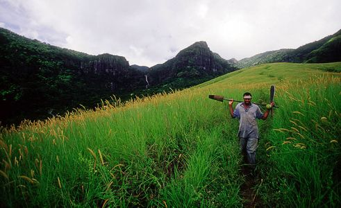 Local man walking the trail with machette and shovel In the mountains above Sigatoka, Fiji, Islands Magazine