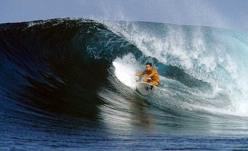9 Time World Champion , Kelly Slater, Hallow Trees Indonesia