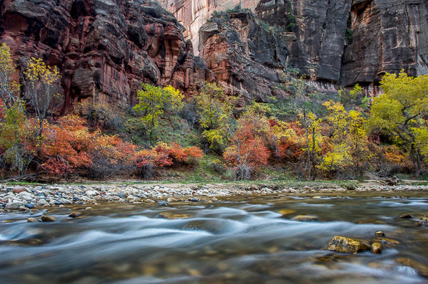 Virgin River and Fall Colors