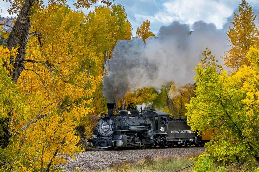 Durango to Silverton Railroad and cottonwoods