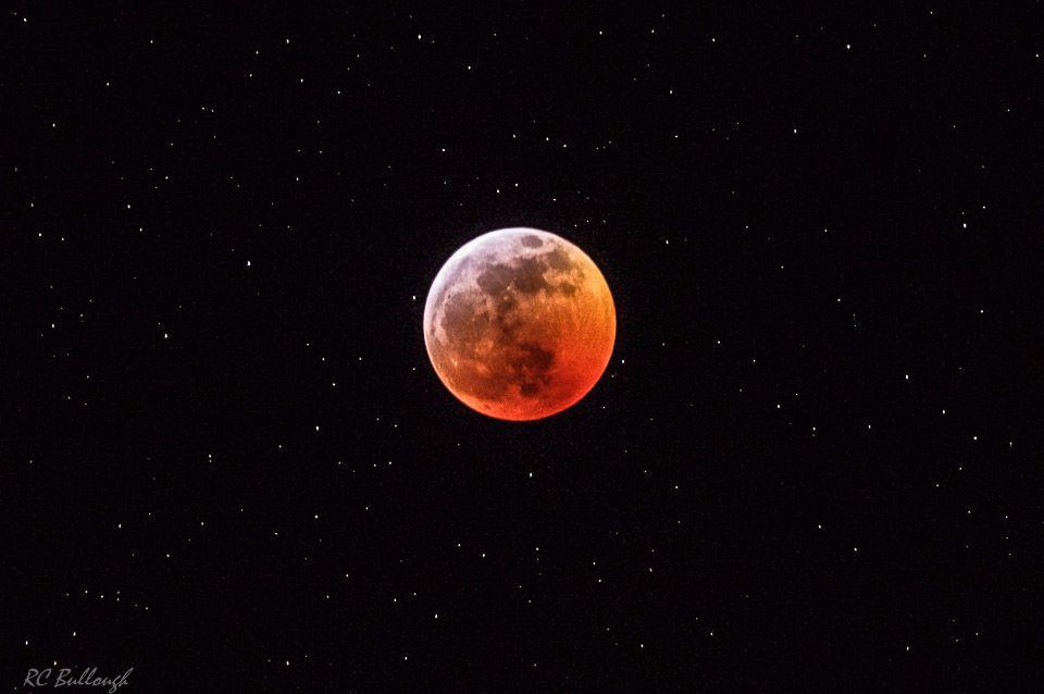 Blood Wolf Moon 2019