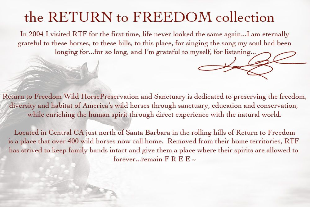 Return to Freedom