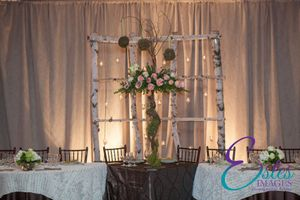 Birch Candel Wall Backdrop from Estes Images.jpg