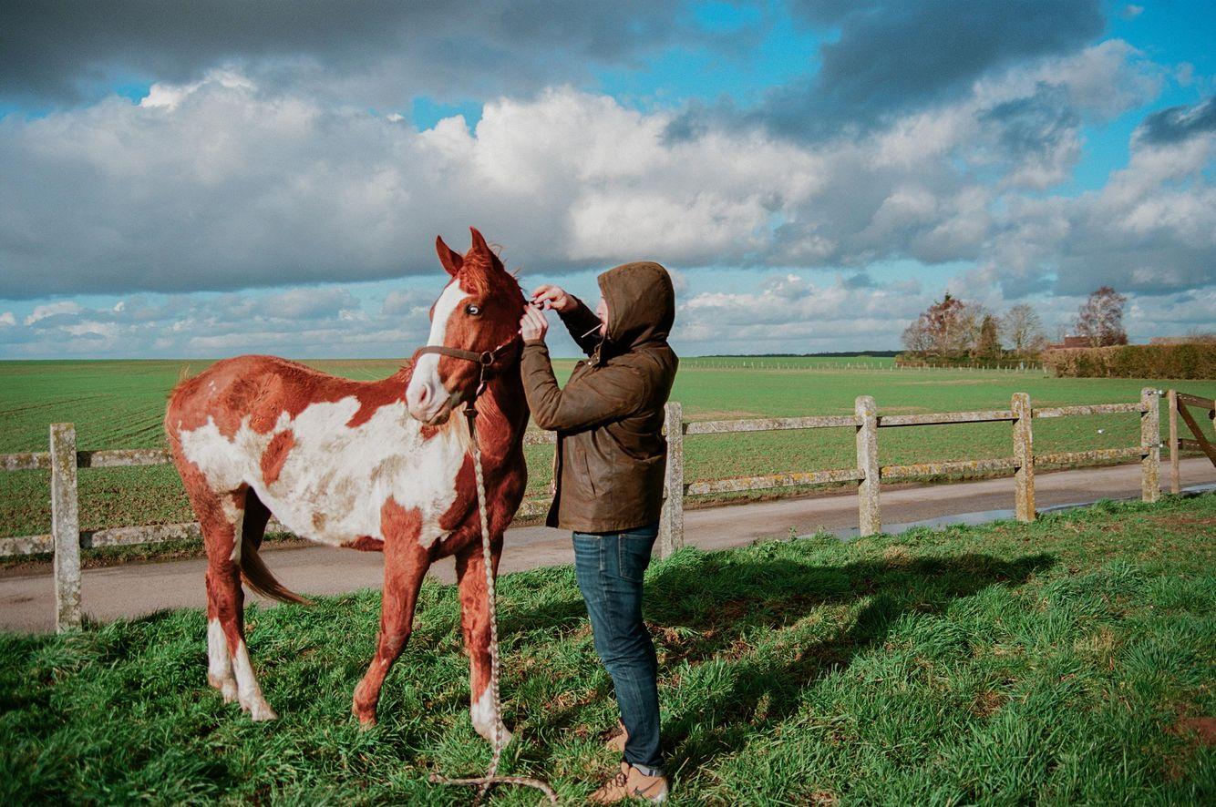 Niv_Shank_horses_french_lifestyle_6.jpg