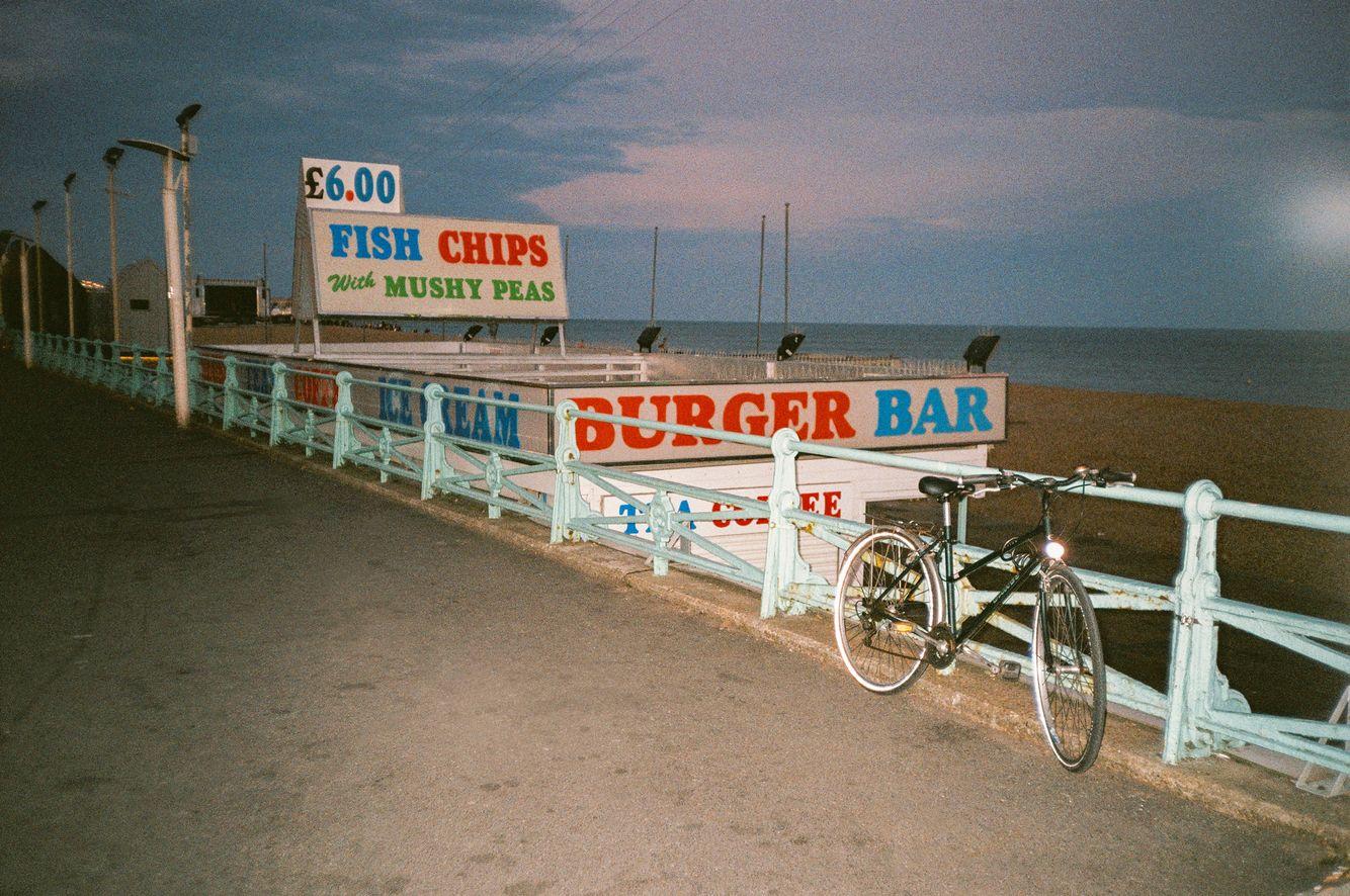 Brighton_beach_england33_Niv_shank_5.jpg