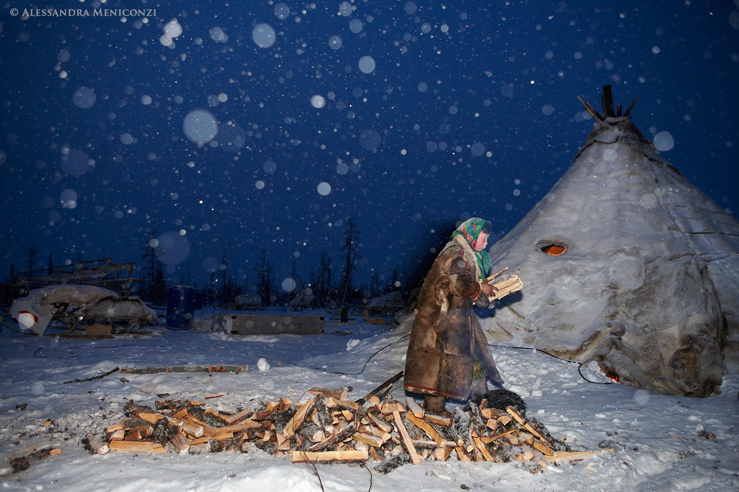 A young Nenet woman prepares firewood at her family's winter camp.