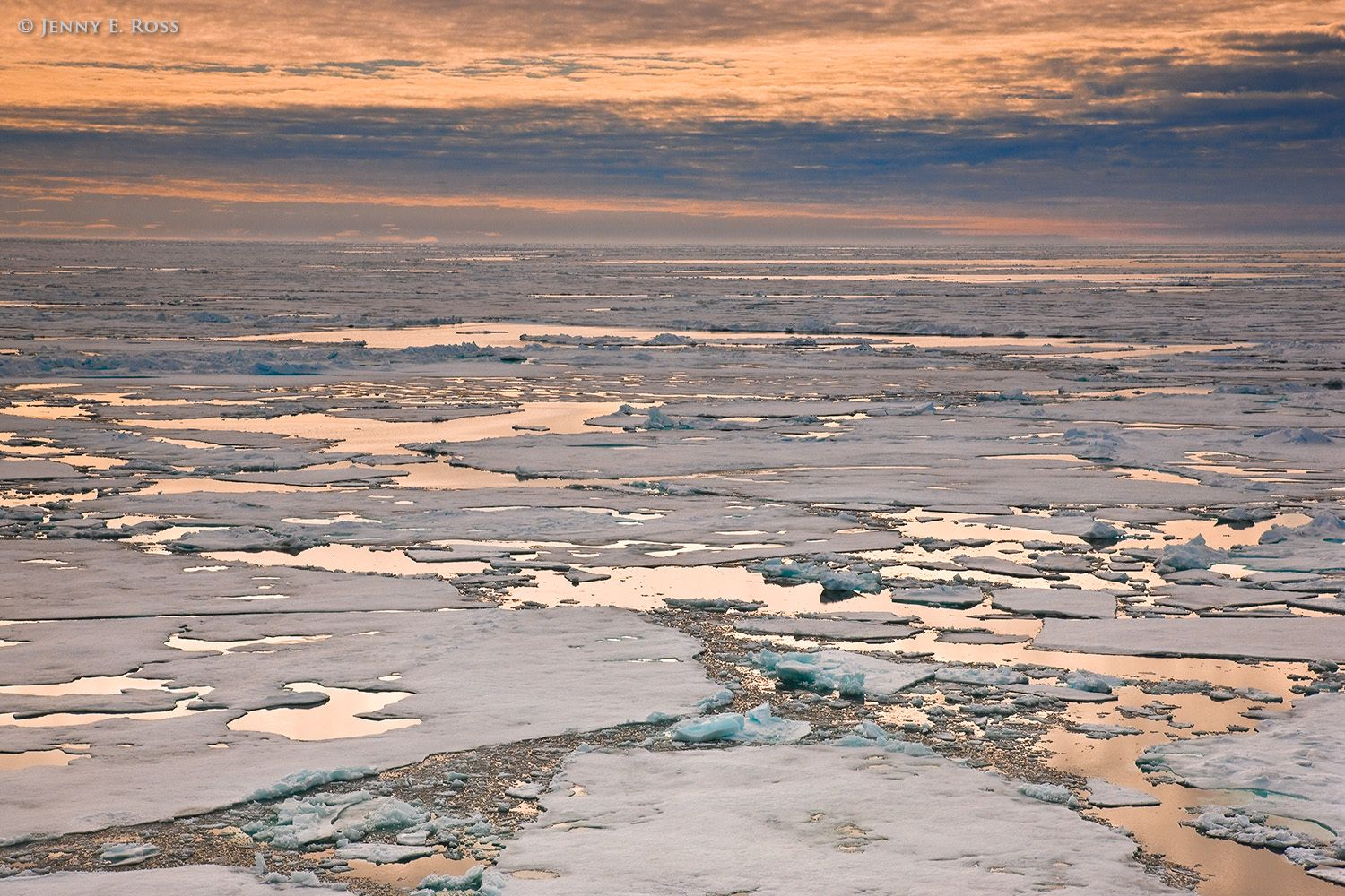 Melting Arctic sea ice in late summer.