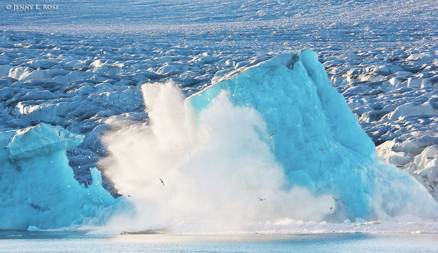 An immense chunk of ice calves away from Lilliehookbreen (Lilliehook Glacier) and collapses into the sea.