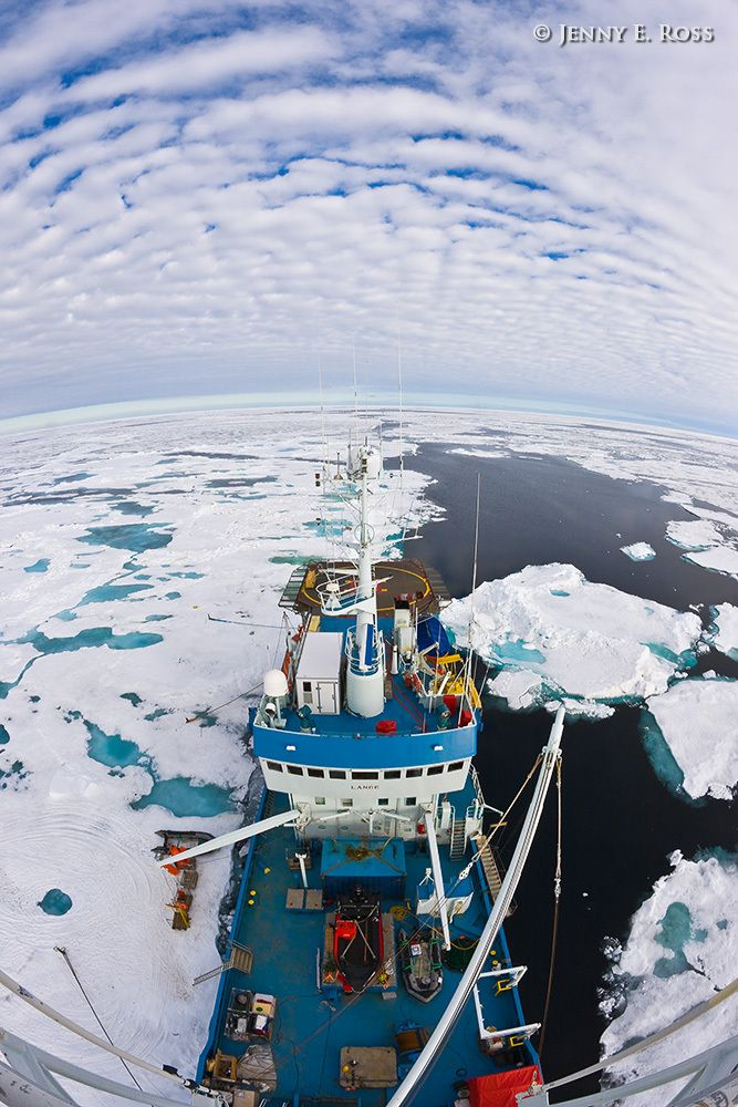 Scientific research on arctic sea ice, central polar basin, Arctic Ocean