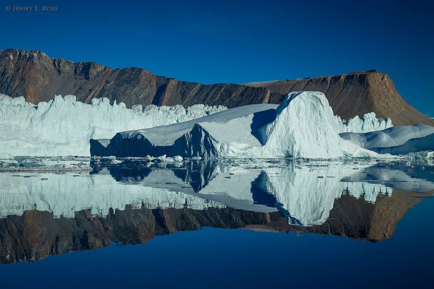 Icebergs, ancient metamorphosed sedimentary rock, and Daugaard-Jensen Glacier are reflected in the still water of Norvest Fjord in Scoresby Sund, Northeast Greenland National Park, Northeast Greenland.