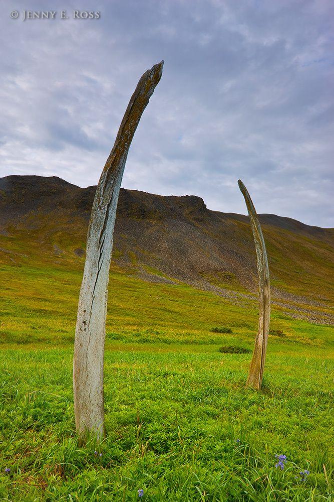 Whalebone Alley, Yttygran Island, Chukotka, Bering Sea, Russia.