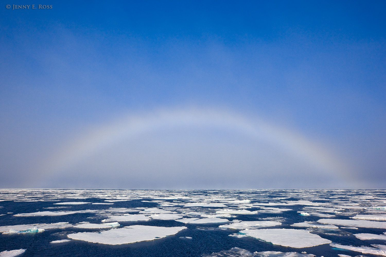 Fog bow above fractured Arctic sea ice near 81 degrees north.