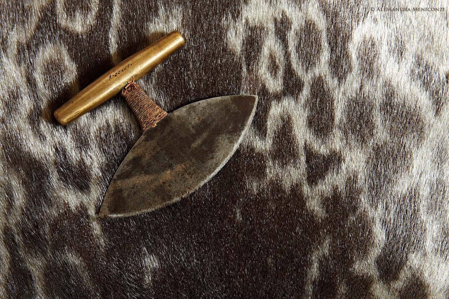 An Inuit ulu knife, resting on the pelt of a ringed seal, in Qaqortoq, South Greenland. For thousands of years the ulu has been used by Arctic people as a knife and scraper for cutting up animals and preparing their skins, and as a general-purpose tool.