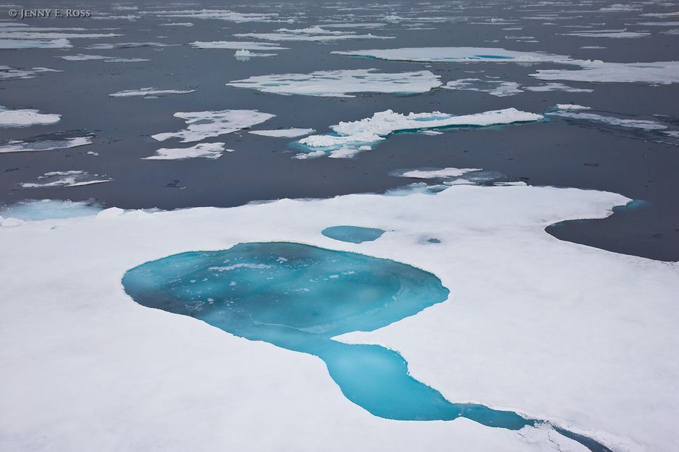Melting Arctic sea ice near 81-degrees north.