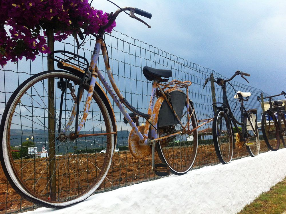 Old bicycles in Italy.