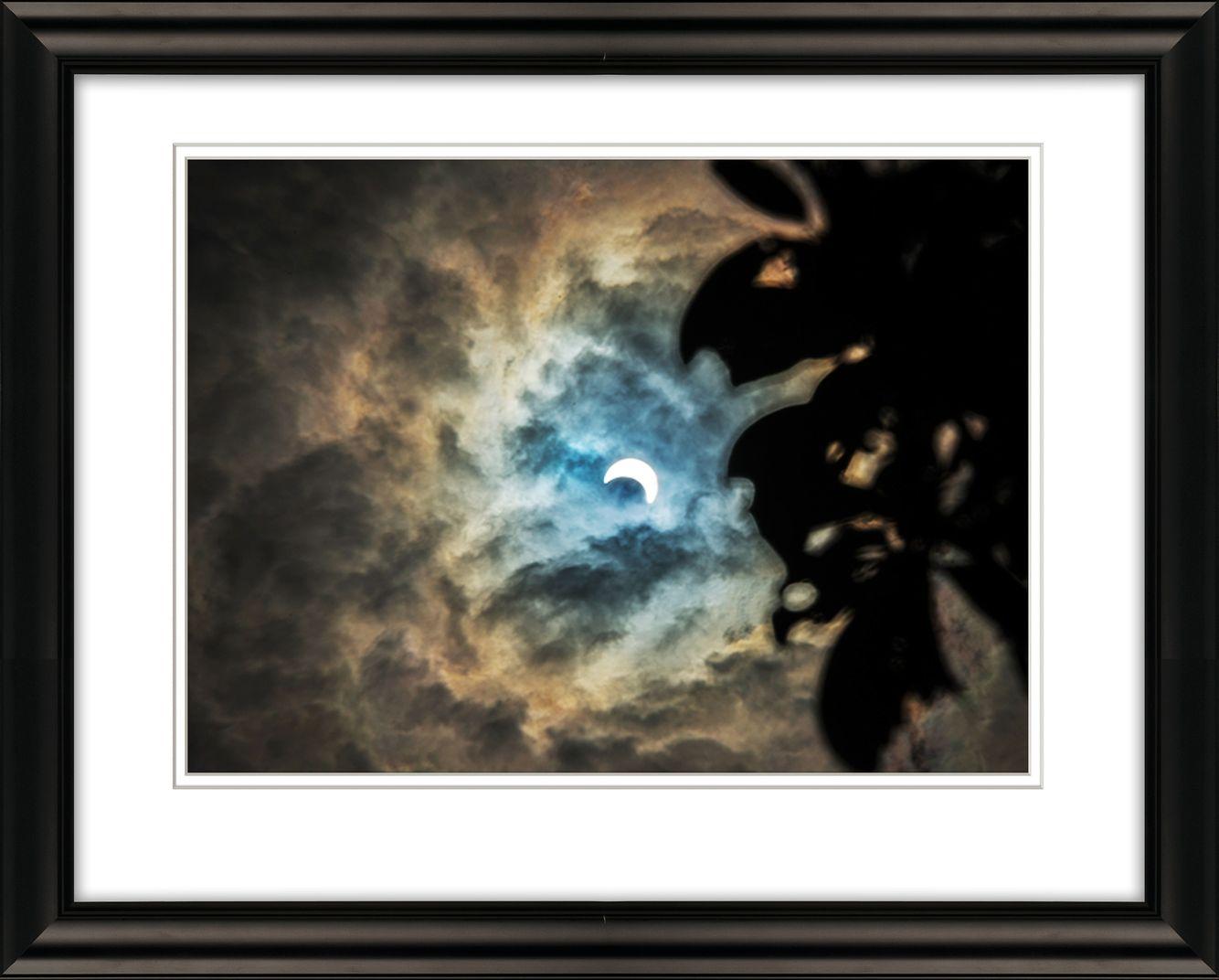 Frame-7725-Solar-Eclipse-livebooks-.jpg