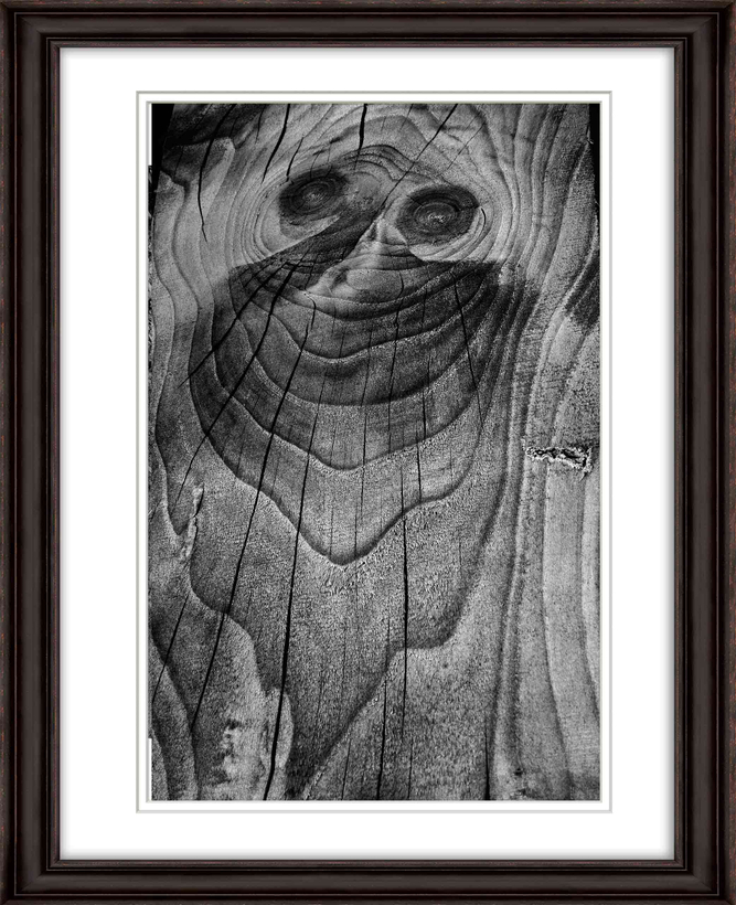 Framed-Vineyard-image-face-in-wood-opt-sm.jpg