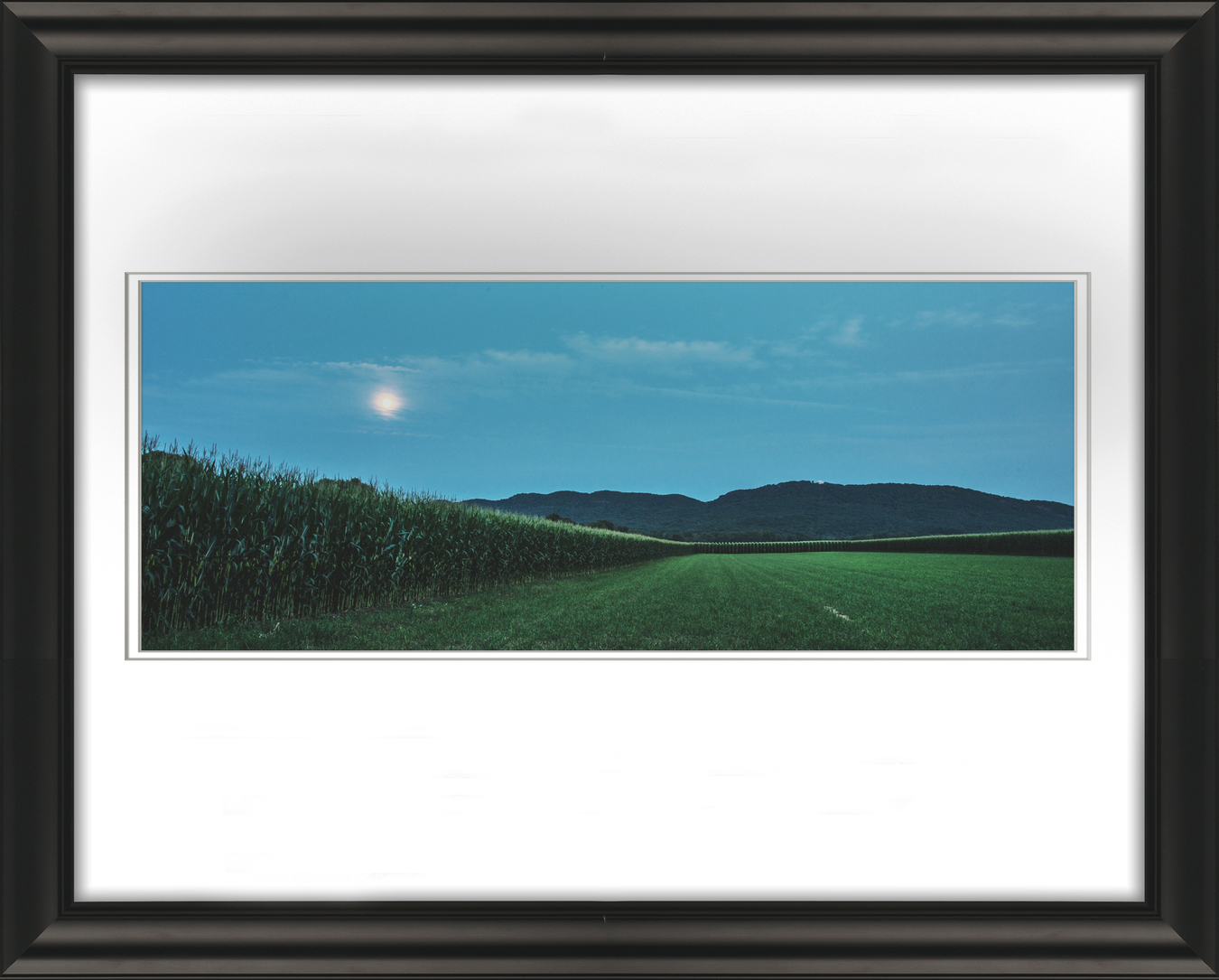 Frame 6564 Corn Open Space and Mood Livebooks.jpg