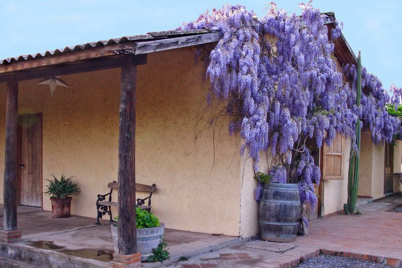House at the Biodynamic Vineyard Chile by Photographer John Wagner