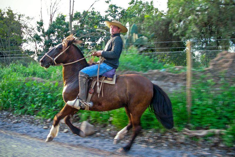 Farmer on Horse Near Valle de Malpo Chile, by Photographer John Wagner