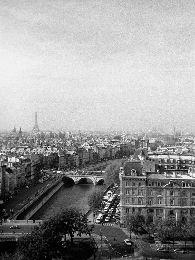 Paris View from the top of Notre Dame by John Wagner Photography