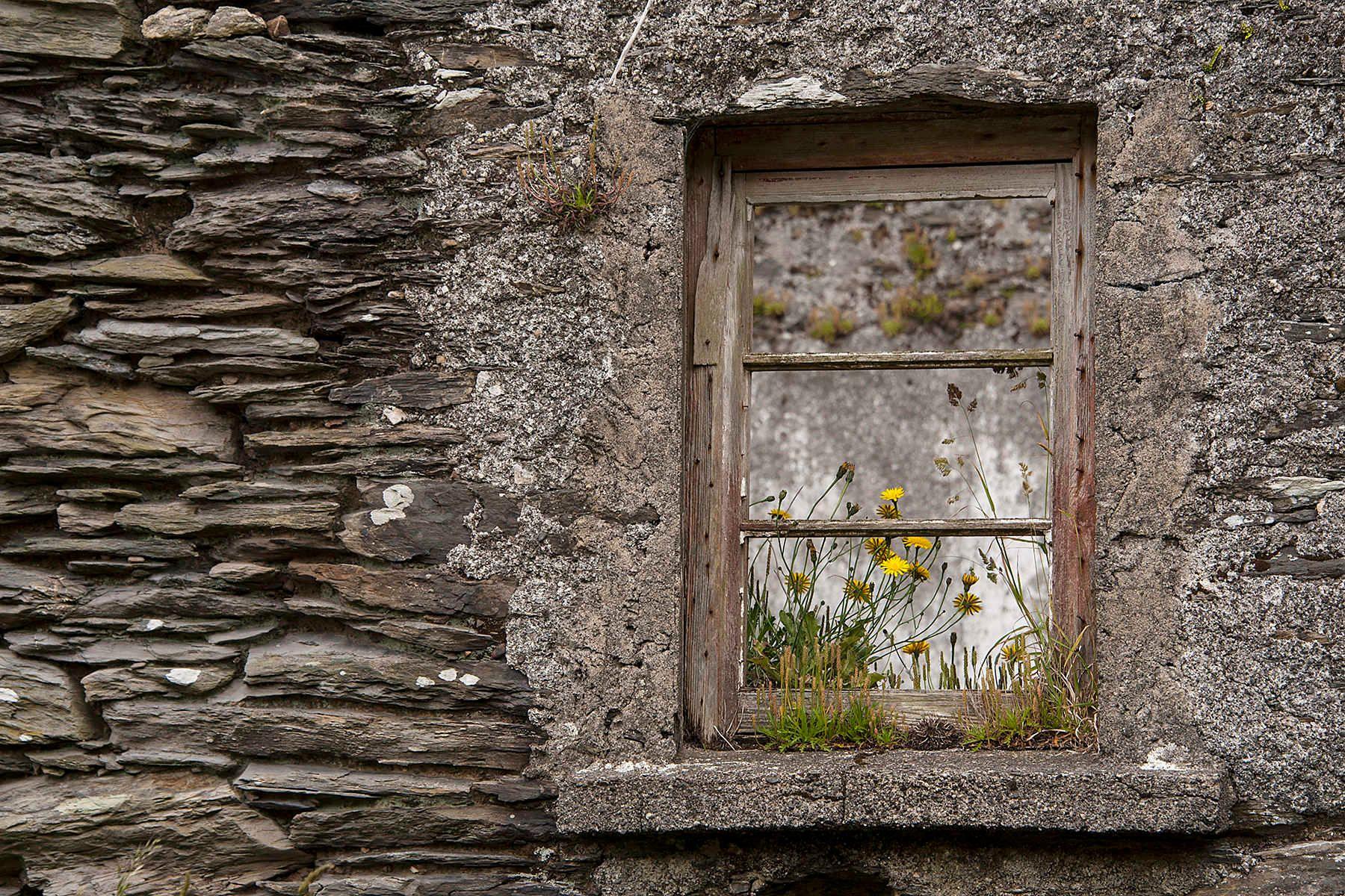 4_1dsc_5995_window_abandoned_house_near_garnish.jpg