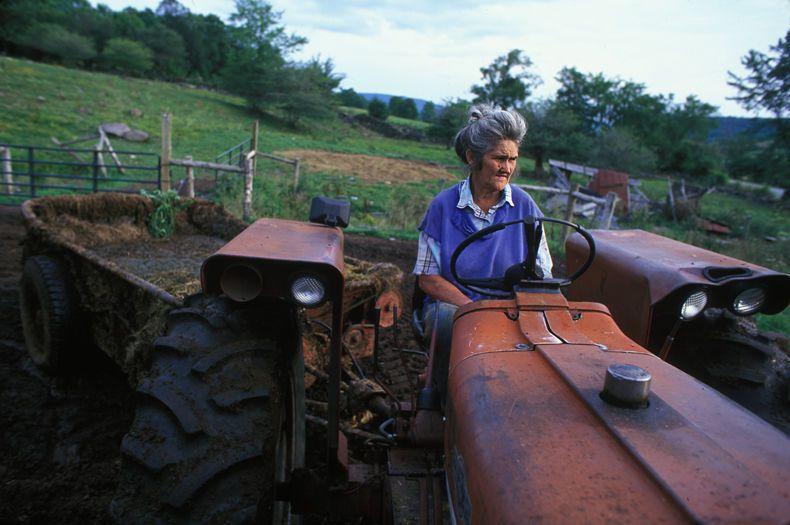 Donna Chaplin in Dairy Farm