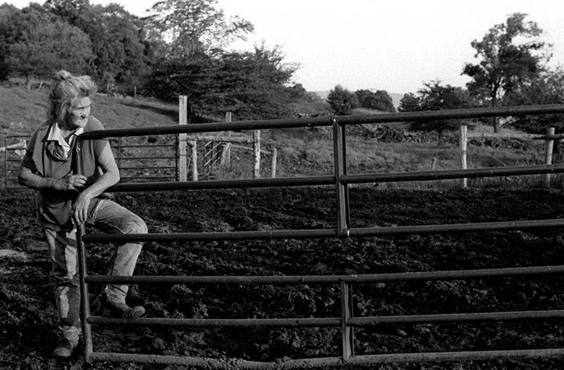 Donna Champlin in Dairy Farm
