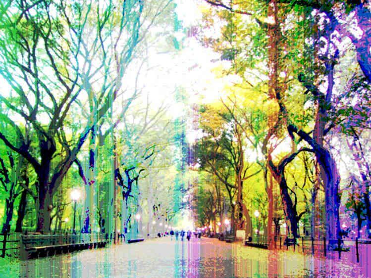 6_0_237_1multi_color_central_park.jpg