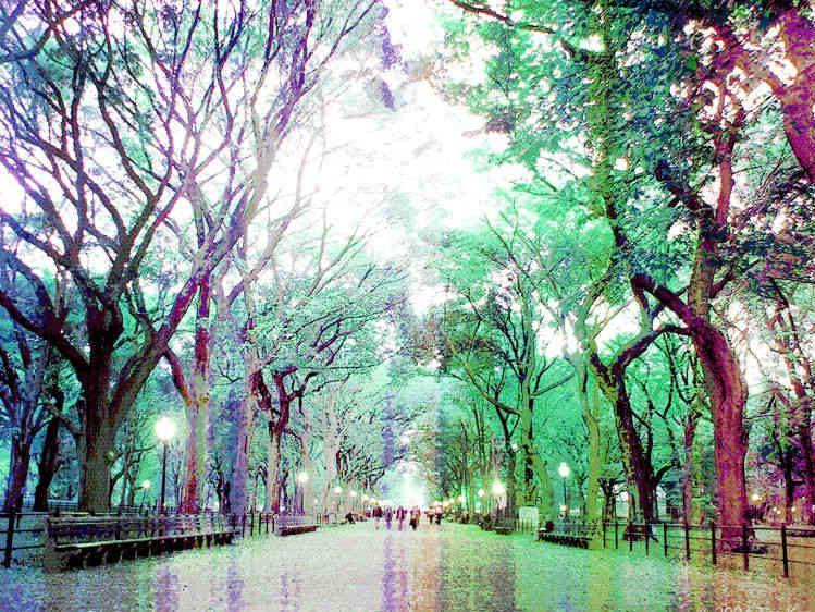 5_0_236_1mosaic_central_park.jpg