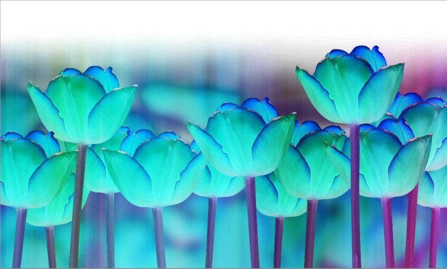 3_0_351_1aqua_tulip_garden.jpg