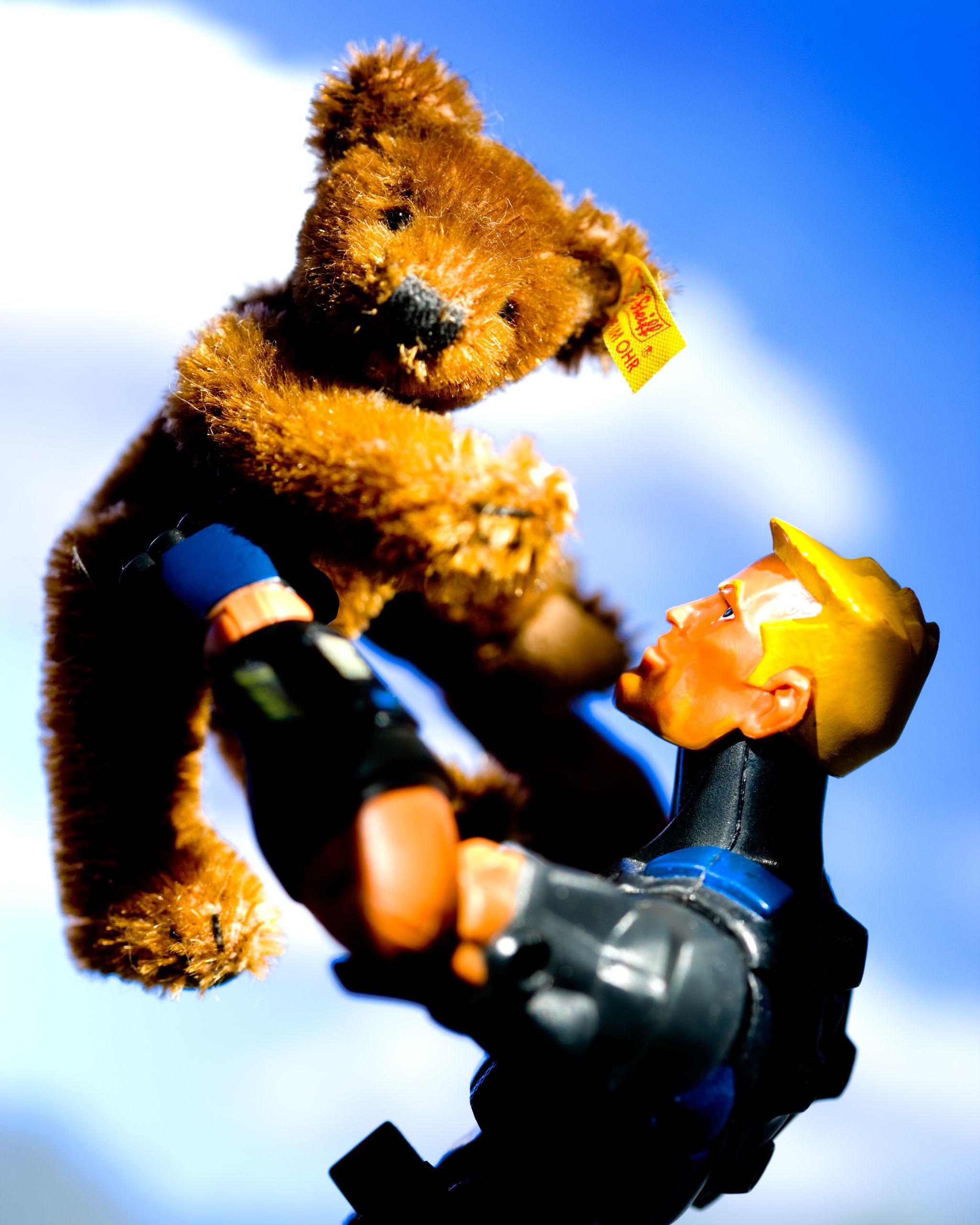Sigma bear.jpg