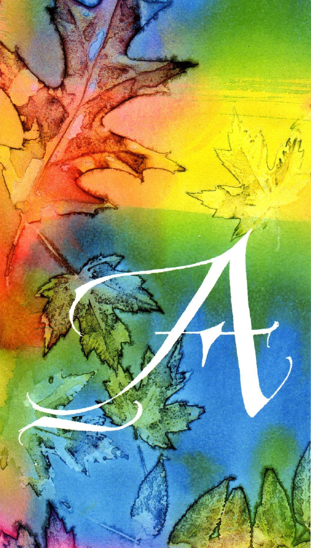 ann's logo.jpg