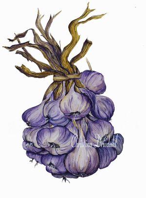 Garlic-edit-web.jpg