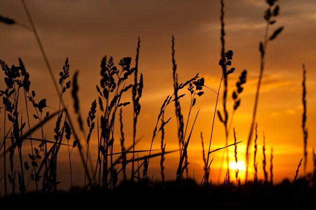 Michigan-Sunset.jpg