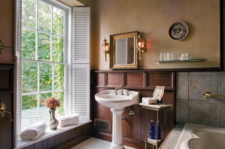 Large window lighting sink & tub - interior bathroom vignette.jpg
