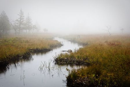 Jordan PondArcadia National Park, Maine