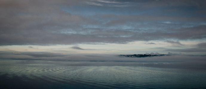 Gathering FogVashon Island, Washington