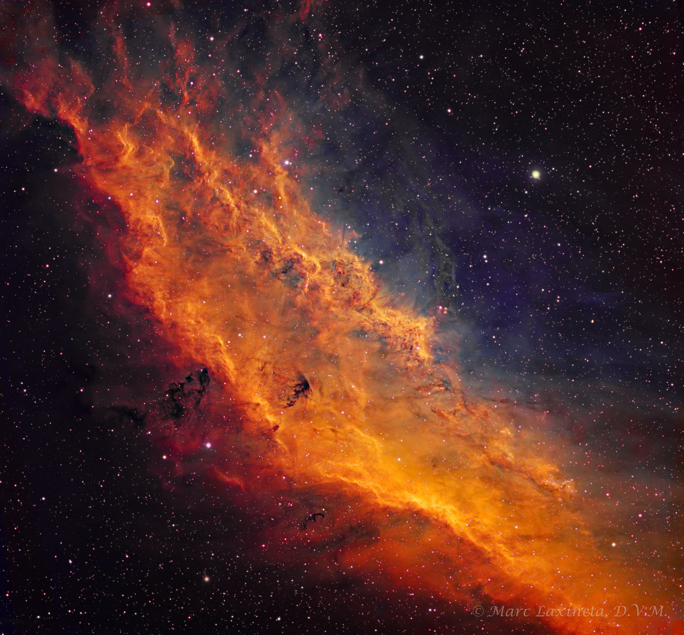 California_Nebula.jpg