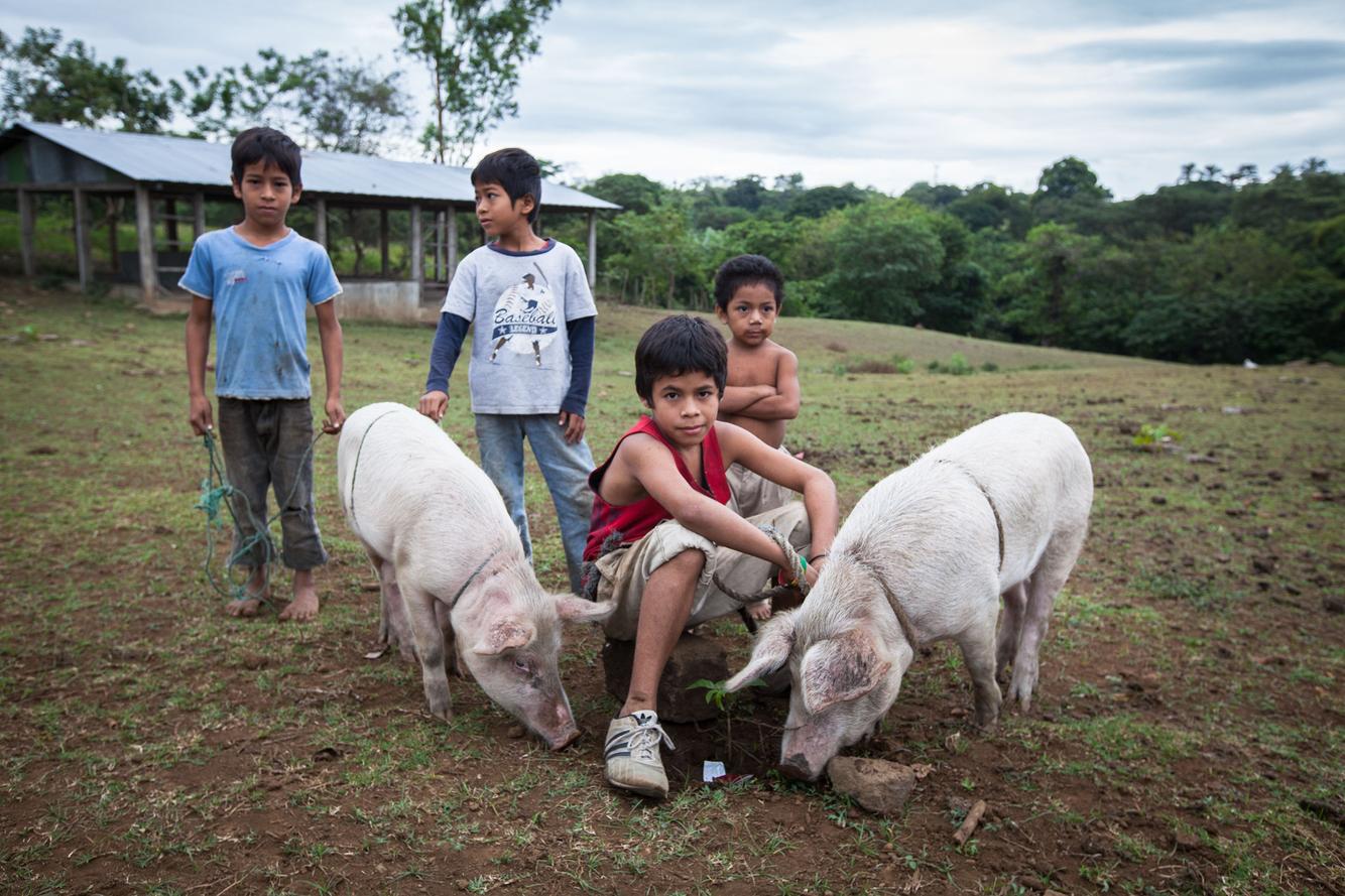NicaraguaHogfarmers.jpg